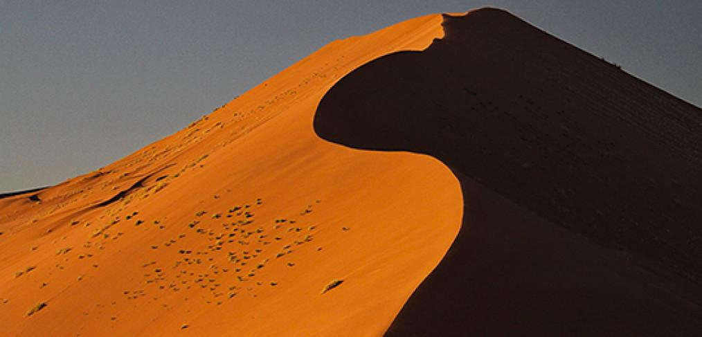 Workshop fotografico in Namibia con Luca Bracali