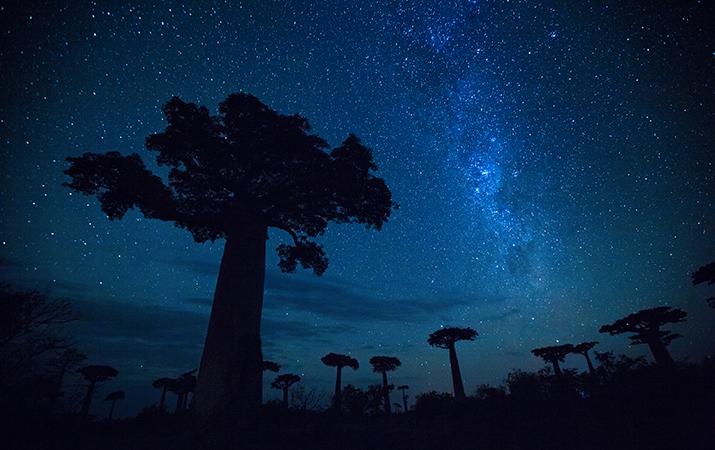 workshop fotografico in Madagascar con Luca Bracali