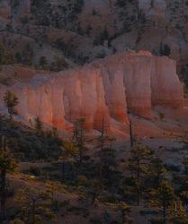 Workshop e viaggio fotografico nei parchi USA con Luca Bracali