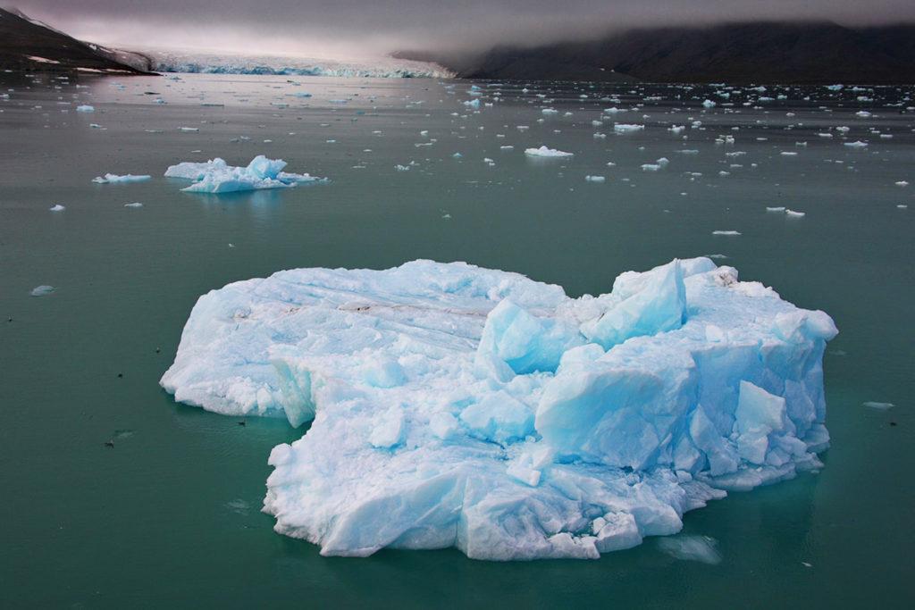 Svalbard Iceberg