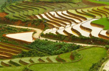 Viaggio fotografico in Vietnam con Luca Bracali