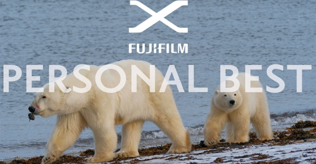 Fujifilm X-Photographer Luca Bracali Personal Best