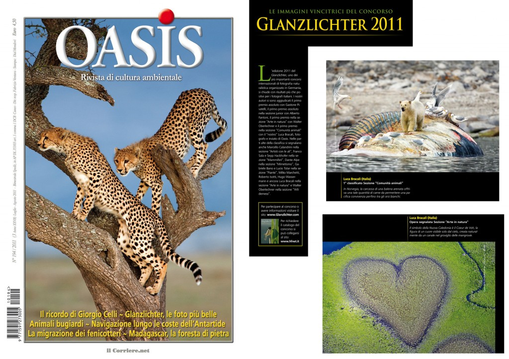 Oasis_Luglio_2011-1024×723