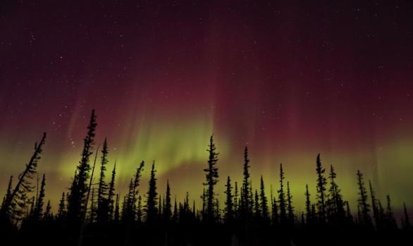 Workshop fotografico Canada con Luca Bracali -Aurore boreali