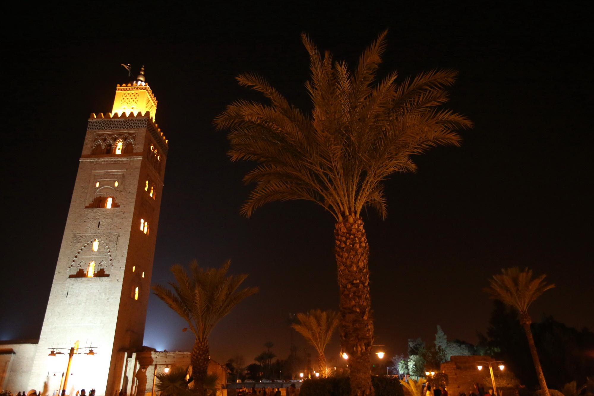 Marocco_IQ2A2849_∏ Luca Bracali