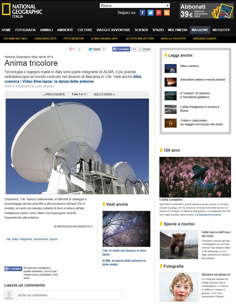 _Foto Anima tricolore – 7 di 11 – National Geographic
