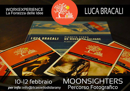 workexperience_certezza_idee_bracali