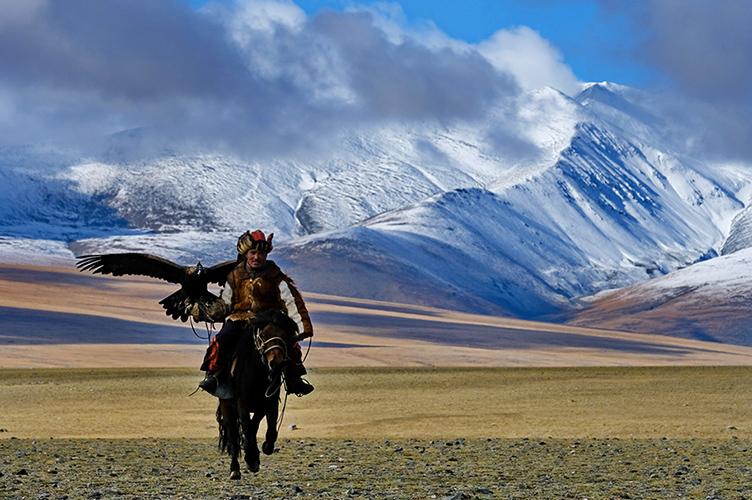 mongolia_man_horse_shadow_500_high