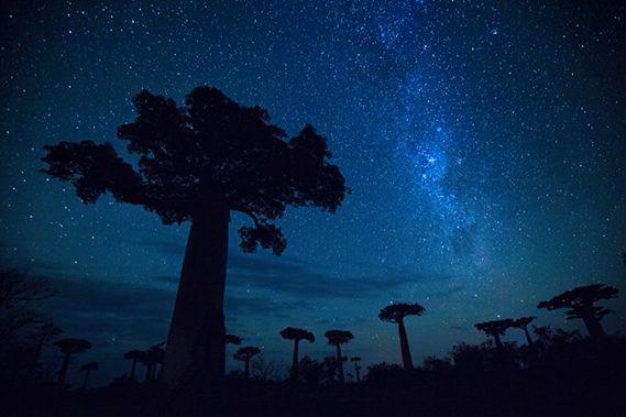 Viaggio fotografico in Madagascar