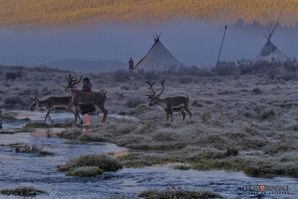 Mongolia: workshop e viaggio fotografico con Luca Bracali