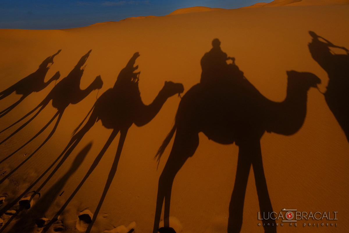 Viaggio_fotografico_Marocco14