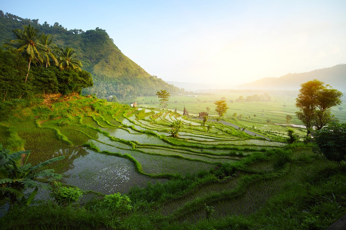 indonesia_irian_jaya_green_beach-min
