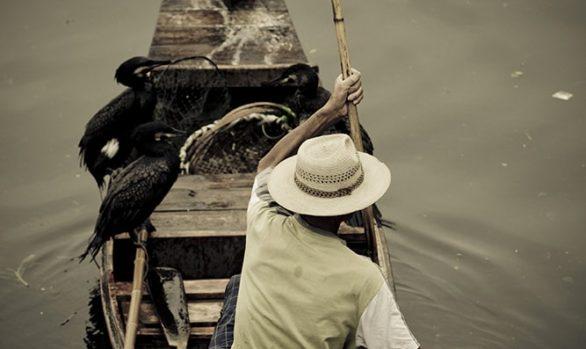 Viaggio fotografico in Cina, pescatore con cormorani