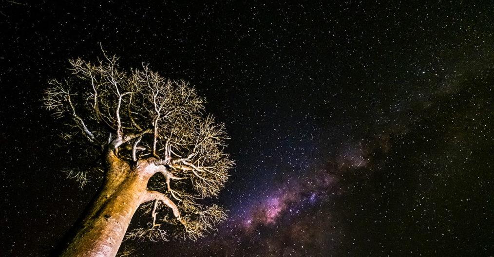 Viaggio fotografico Madagascar con Luca Bracali