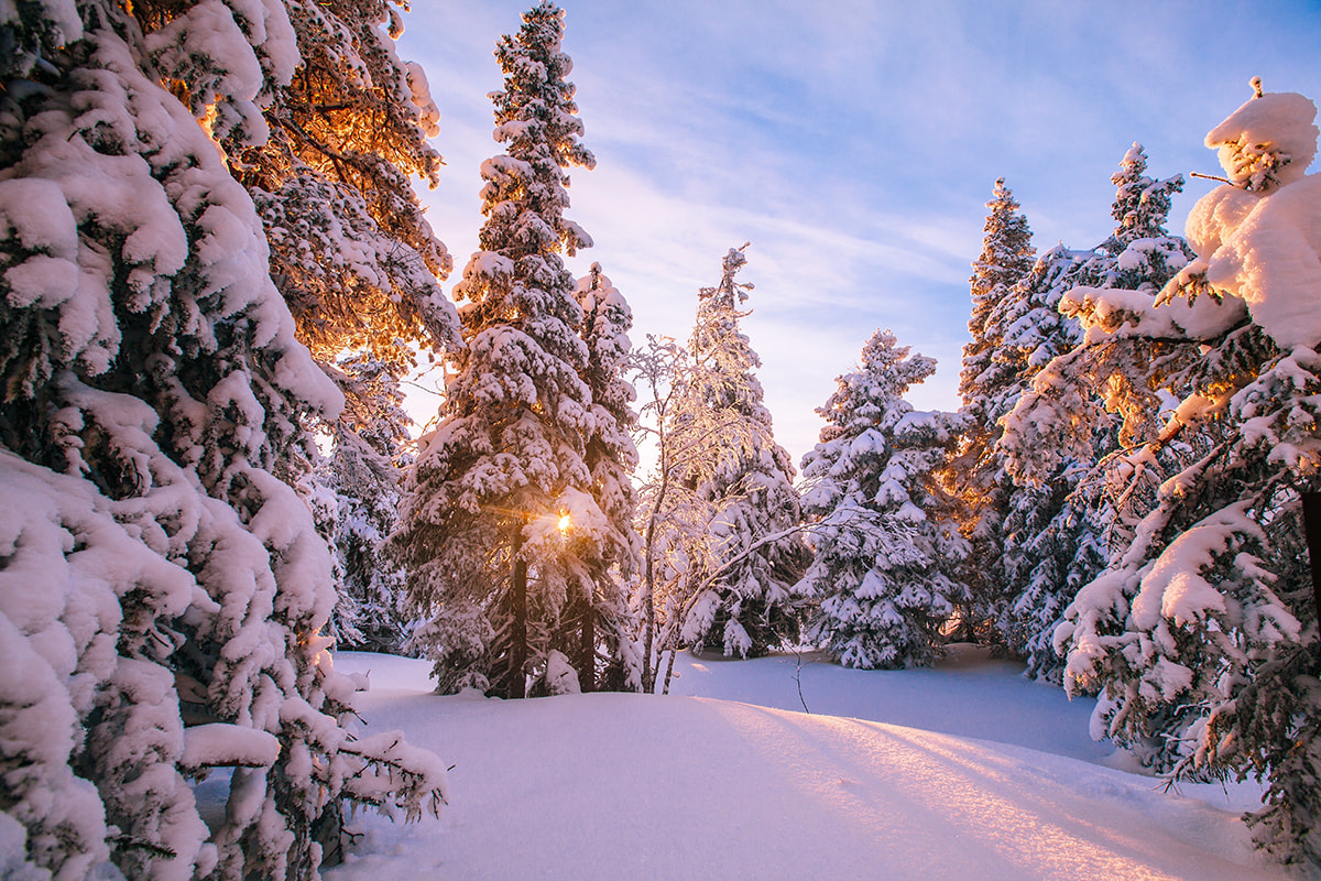 Viaggio-fotografico-in-Finlandia03-min