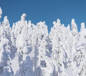 Viaggio fotografico in Finlandia