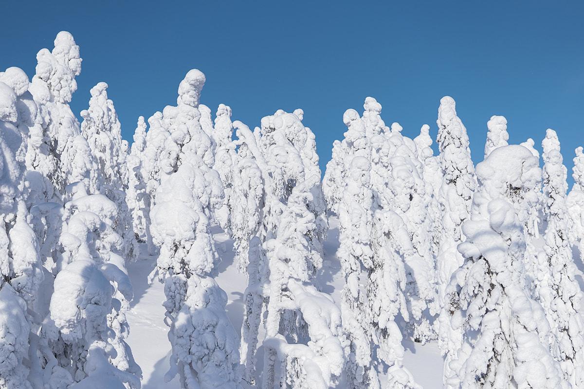 Viaggio-fotografico-in-Finlandia04-min