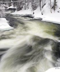 Viaggio fotografico in Lapponia, Finlandia - foto di Luca Bracali
