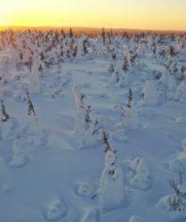 Viaggio fotografico in Finlandia con Luca Bracali -