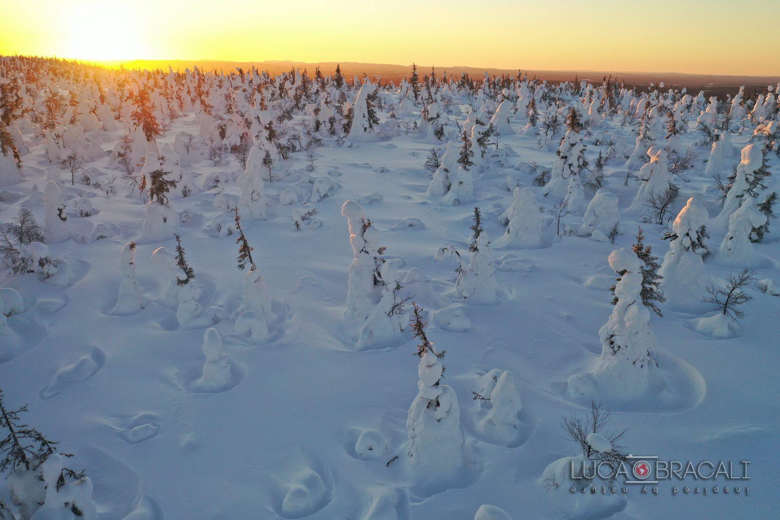 Lapponia_Finlandese_sunset