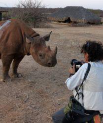 Viaggio fotografico in Kenya con Luca Bracali e Laura Scatena, foto di backstage, Rinoceronte
