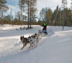 In Finlandia e Norvegia con Luca Bracali