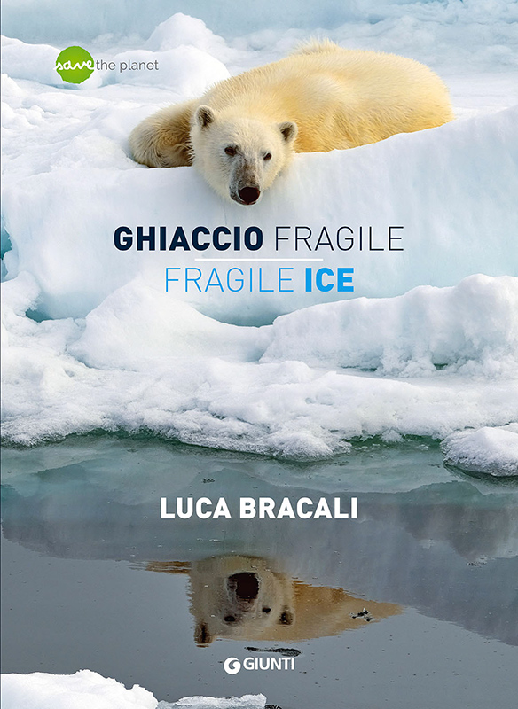 Ghiaccio fragile, libro di Luca Bracali