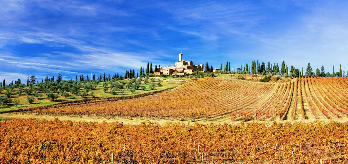 Picturesque  Tuscany – golden  vineywrds and castles. Wine region of Italy
