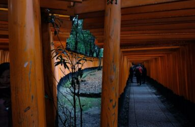 Viaggio fotografico in Giappone con Luca Bracali