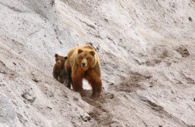 Viaggio fotografico in Kamchatka