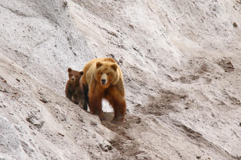 Viaggio fotografico Kamchatka 00004-min