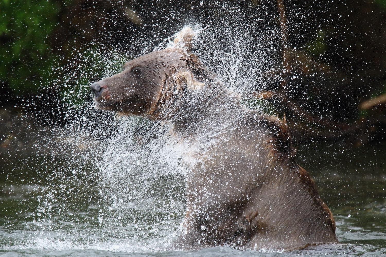 Viaggio fotografico Kamchatka 00008-min
