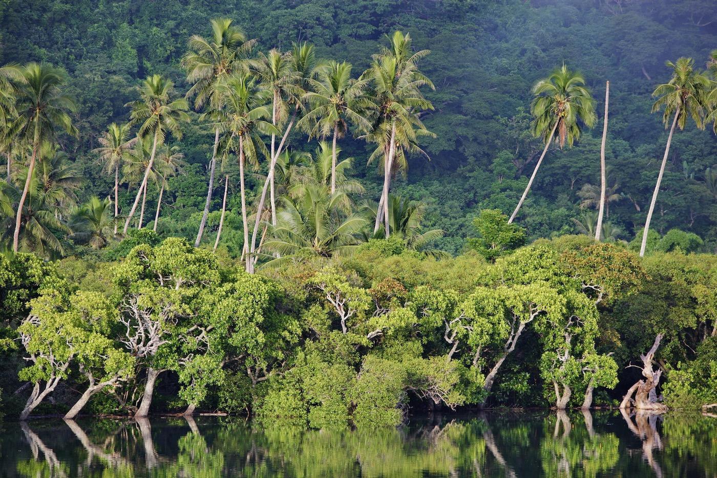 Viaggio fotografico Nuova Caledonia 00002