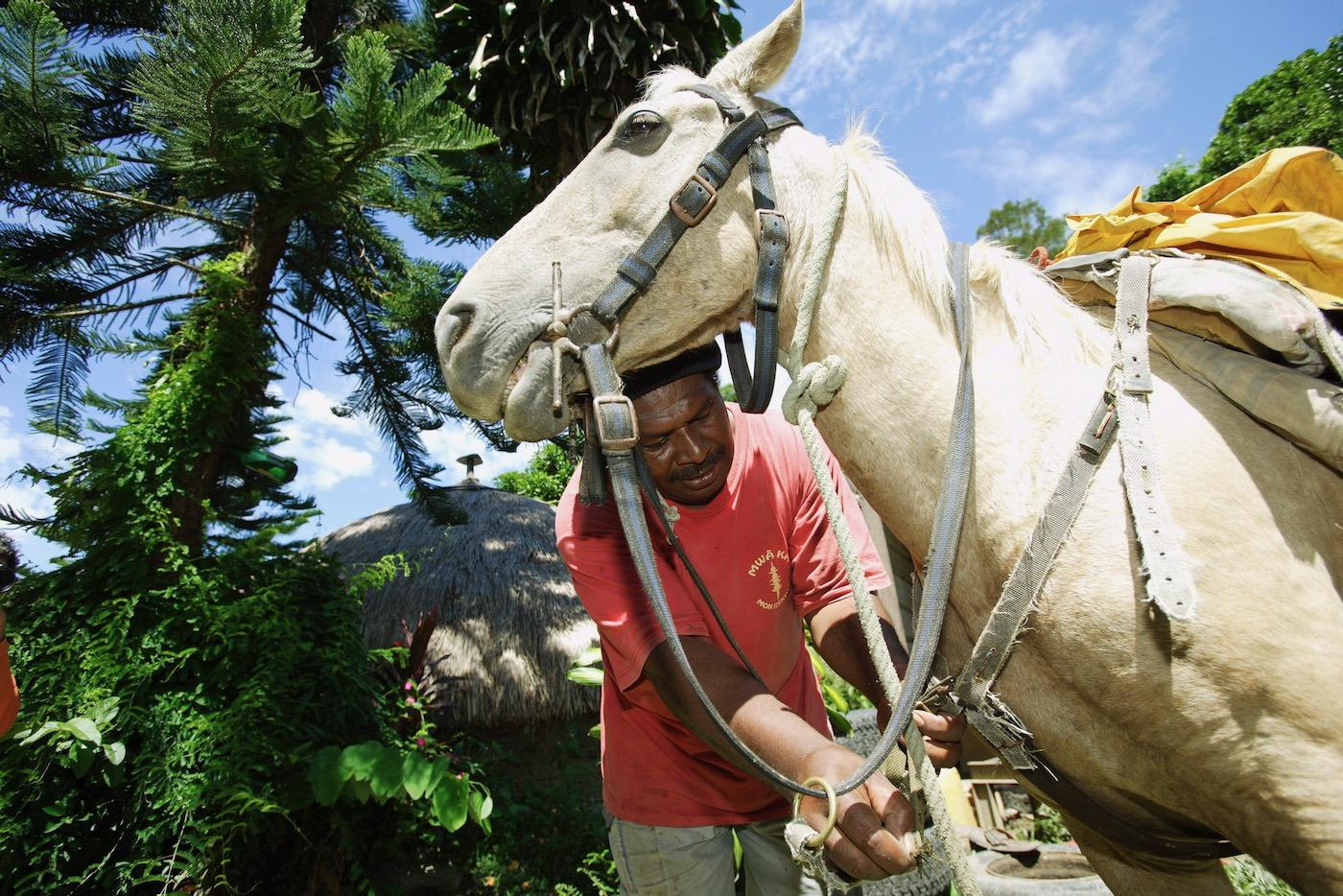 Viaggio fotografico Nuova Caledonia 00003