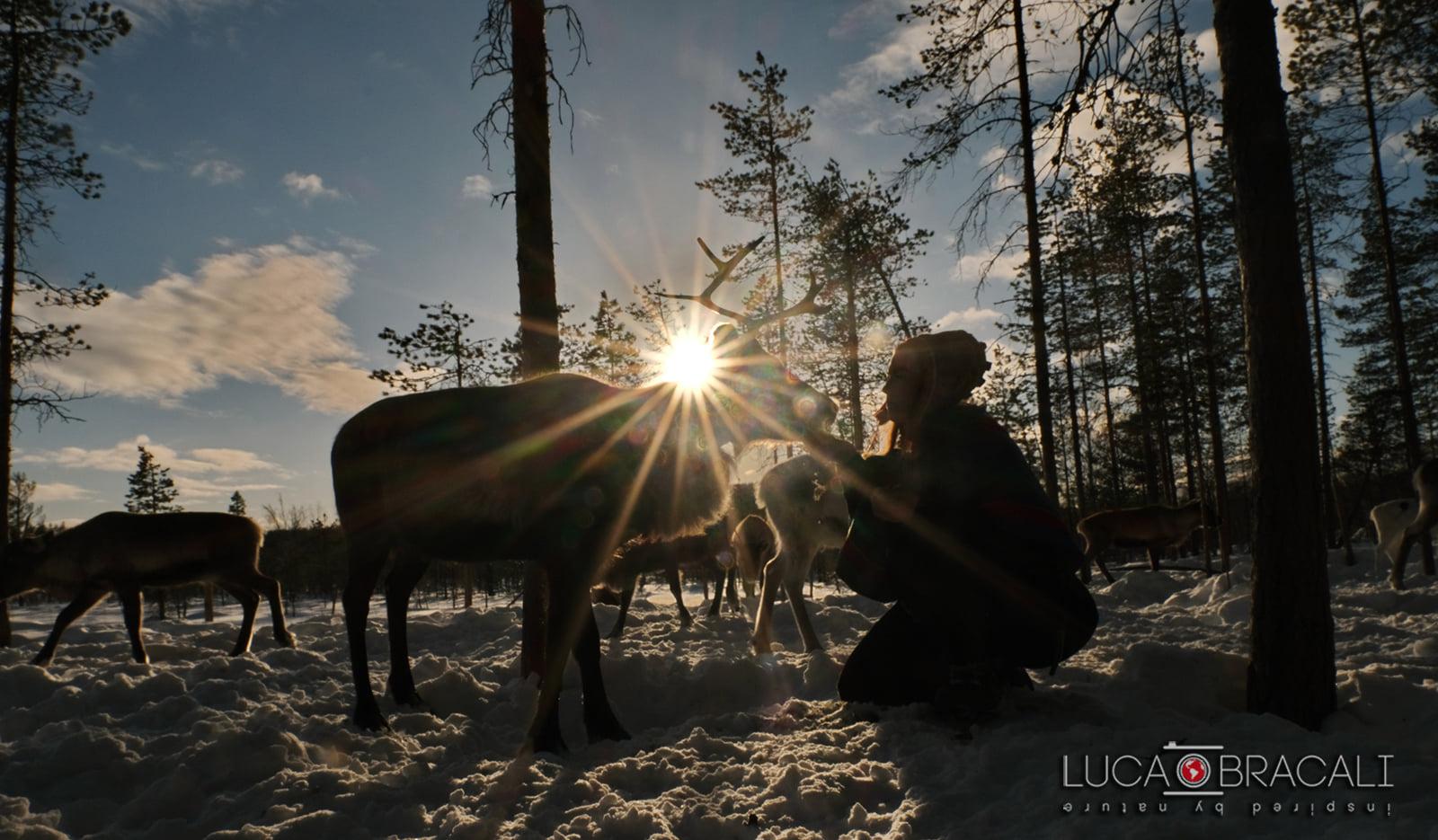 Viaggio fotografico in Svezia 00013