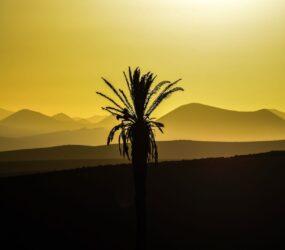 Viaggio fotografico a Lanzarote con Luca Bracali